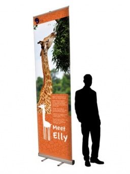 Need a Giant 3m pull-up Banner?
